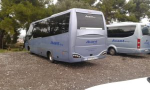 buycatbus2015