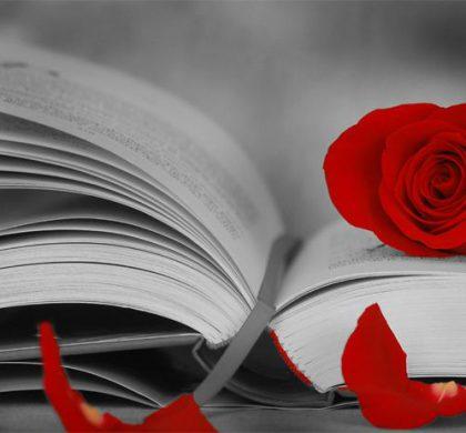 San Jorge.- Día Internacional del libro. Cultura y tradiciones.