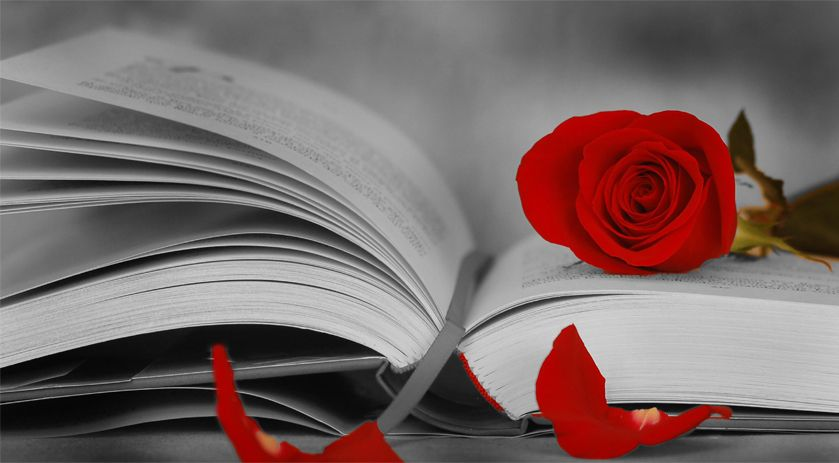 Sant Jordi's Day in Catalonia.- Books and Roses. Culture and Traditions