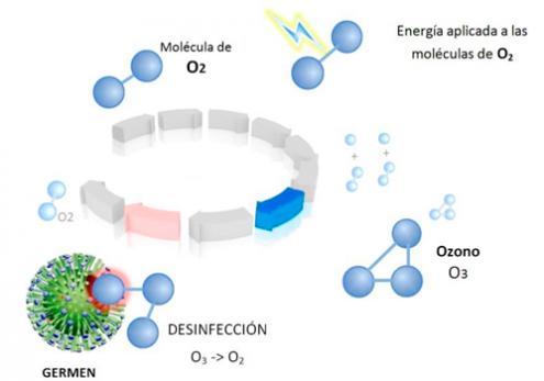avant-autocares-barcelona-medidas-sanitarias-ozono