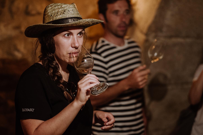 ENOTURISME.- Les Rutes del Vi i del Cava.